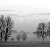 Rheinland, Niederrhein, Huenxe, Naturpark Hohe Mark, Landschaft, Lippeaue, Auenlandschaft, Typische Flusslandschaft, Morgenstimmung, Nebel, Dunst, Baeume, Pappeln