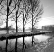 Rheinland, Niederrhein, Wachtendonk, Fluss, Die Niers, Flusslandschaft, Niersaue, Auenlandschaft, Winter, Schnee, Baeume, Pappeln
