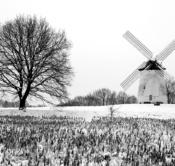 Rheinland, Niederrhein, Krefeld-Traar, Egelsberg, Historische Muehle, Windmuehle, Egelsbergmuehle, Winter, Schnee