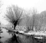 Rheinland, Niederrhein, Krefeld, Naturschutzgebietes Riethbenden, Winter, Schnee, Neuschnee, Morgens, Wasser, Rinne, Typische Kopfweide